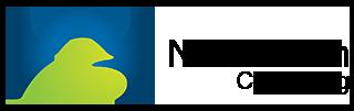 Nubessom Consulting